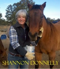http://writersinthestorm.files.wordpress.com/2012/12/shannondonnelly_nm1.jpg?w=195&h=235
