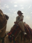 Fae on a camel in Egypt